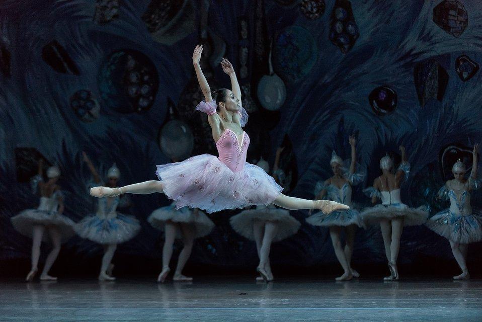 Стоянов и Кухар провели благотворительный балет, собравший аншлаг - фото 78061