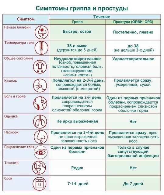 Профилактика гриппа: Как уберечься от опасной болезни - фото 90370