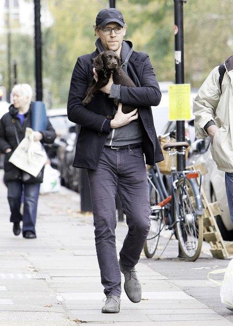 Фото дня: Том Хиддлстон со щенком в руках умилил миллионы - фото 89719