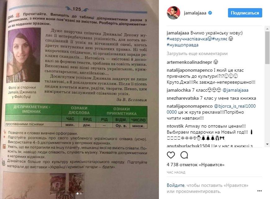 'Неудобная певица': Джамала появилась в учебнике украинского языка для 7 класса - фото 94971