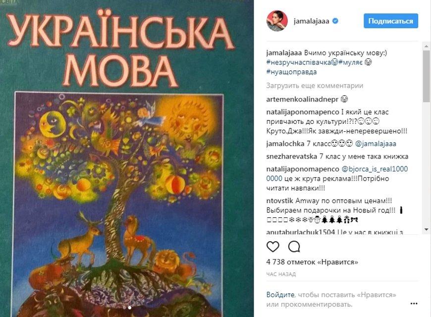 'Неудобная певица': Джамала появилась в учебнике украинского языка для 7 класса - фото 94972