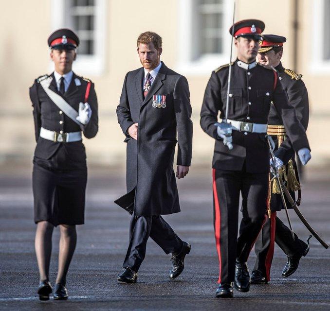 Принц Гарри стал военным предводителем на флоте Великобритании - фото 98317