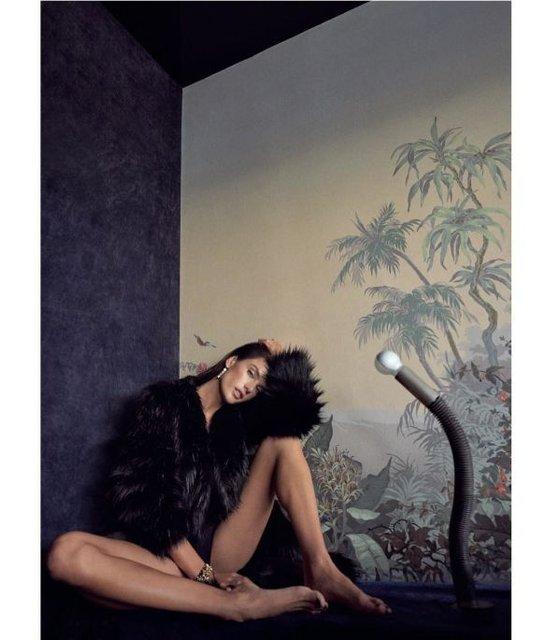 Алессандра Амбросио  топлес и в мехах снялась в откровенной фотосессии - фото 98393