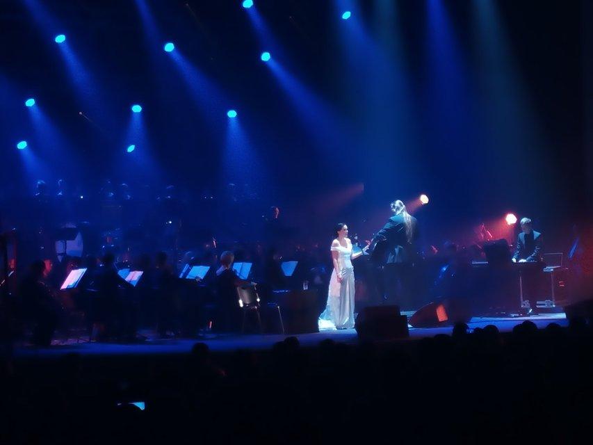 Тарья Турунен выступила в Киеве в рамках Christmas Tour 2017 - ФОТО - фото 98819