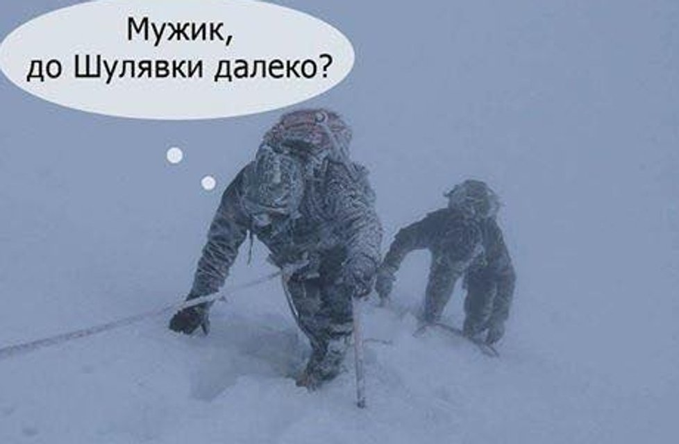 Киев засыпало снегом: реакция соцсетей - фото 97982