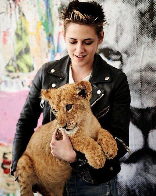 Кристен Стюарт умилила фото с львенком - фото 101937