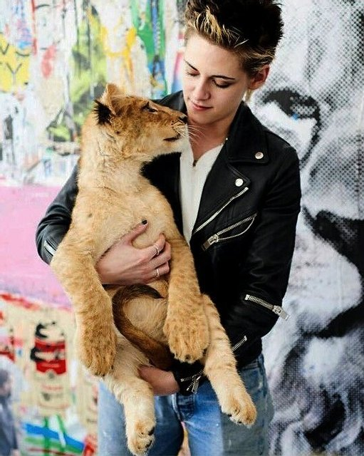 Кристен Стюарт умилила фото с львенком - фото 101936