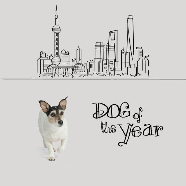 Собака Донателлы Версаче начала зарабатывать деньги - фото 107851