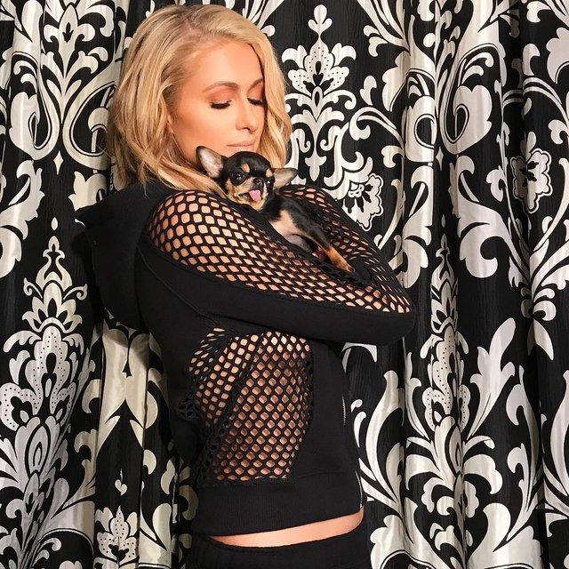 Пэрис Хилтон без белья снялась в прозрачном костюме-сеточке - фото 106024