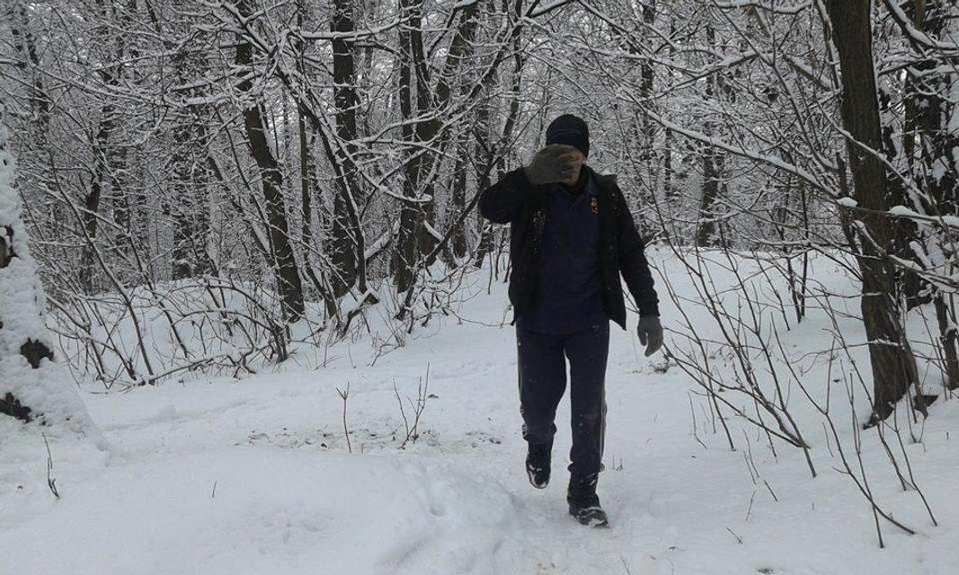 В киевском дендропарке неизвестные вырубают деревья - фото 108060
