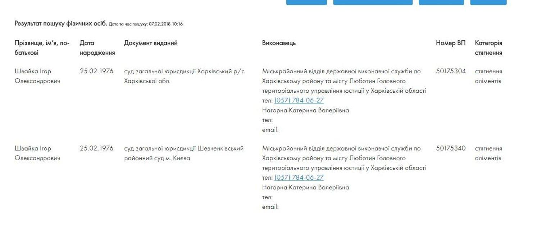 Экс-министр Швайка попал в реестр неплательщиков алиментов - фото 106991