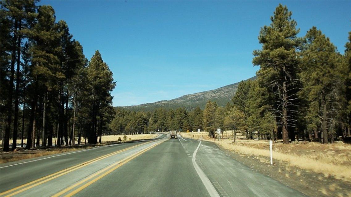 Орел и решка Перезагрузка 2 Выпуск 7: Америка, США, Аризона - фото 114293
