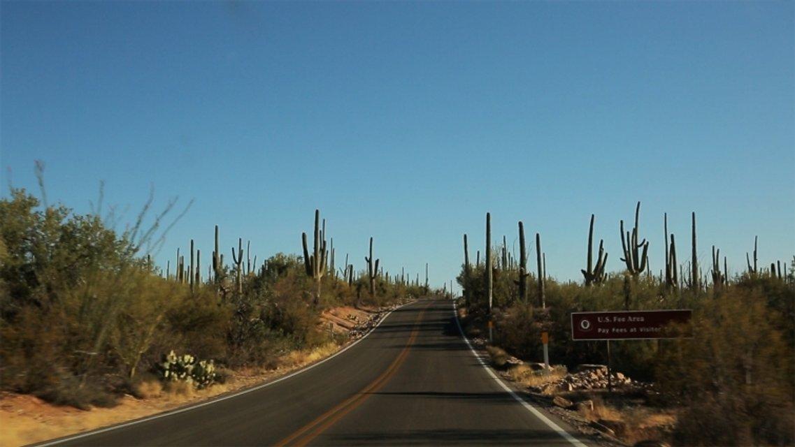 Орел и решка Перезагрузка 2 Выпуск 7: Америка, США, Аризона - фото 114294