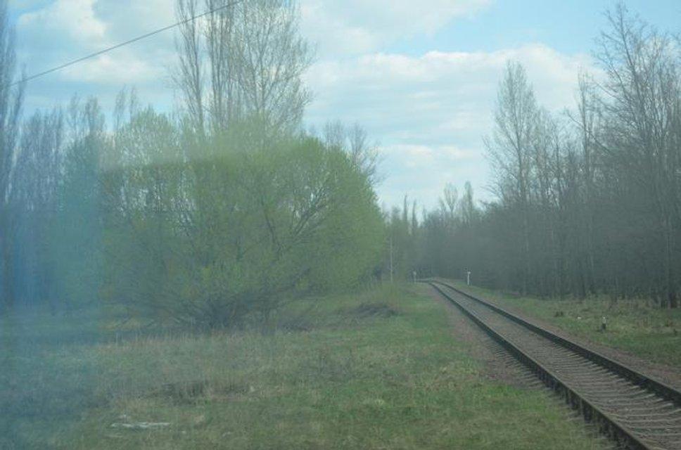Зона отчуждения - куда не попадают сталкеры: Фоторепортаж из Чернобыля - фото 121234