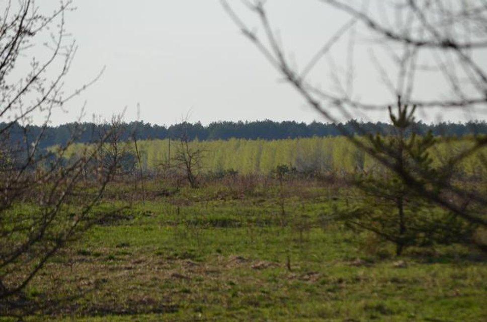 Зона отчуждения - куда не попадают сталкеры: Фоторепортаж из Чернобыля - фото 121231