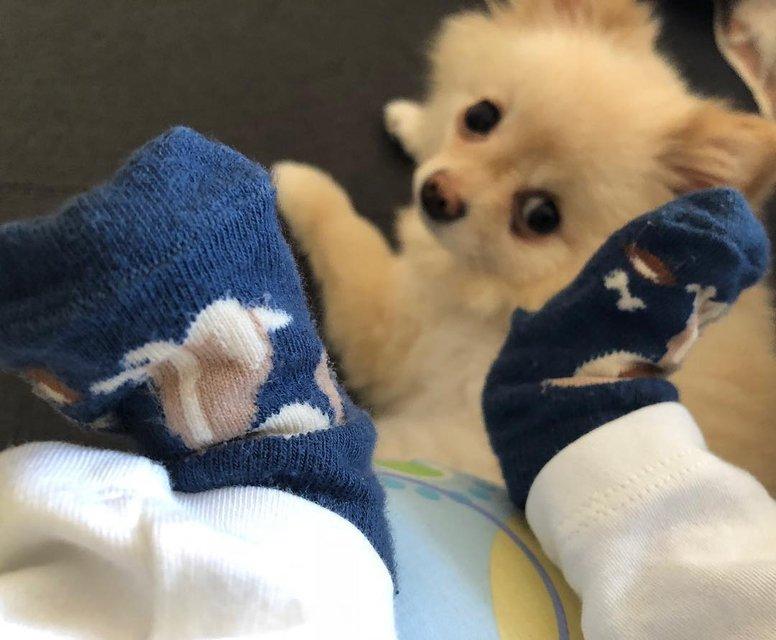 Все дома: Джамала показала крохотные ножки сына - фото 118642