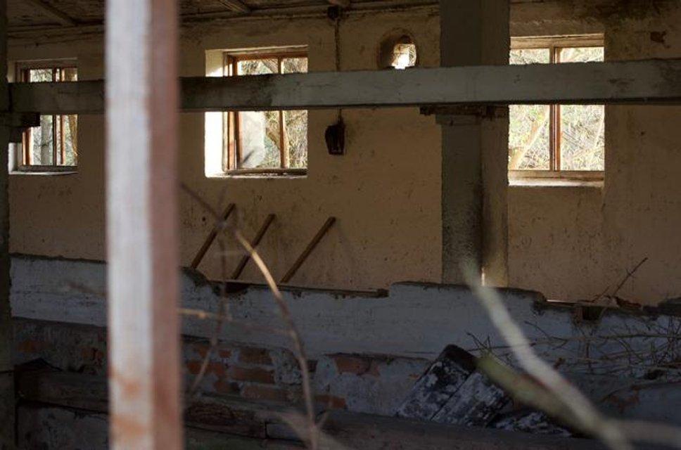 Зона отчуждения - куда не попадают сталкеры: Фоторепортаж из Чернобыля - фото 121256