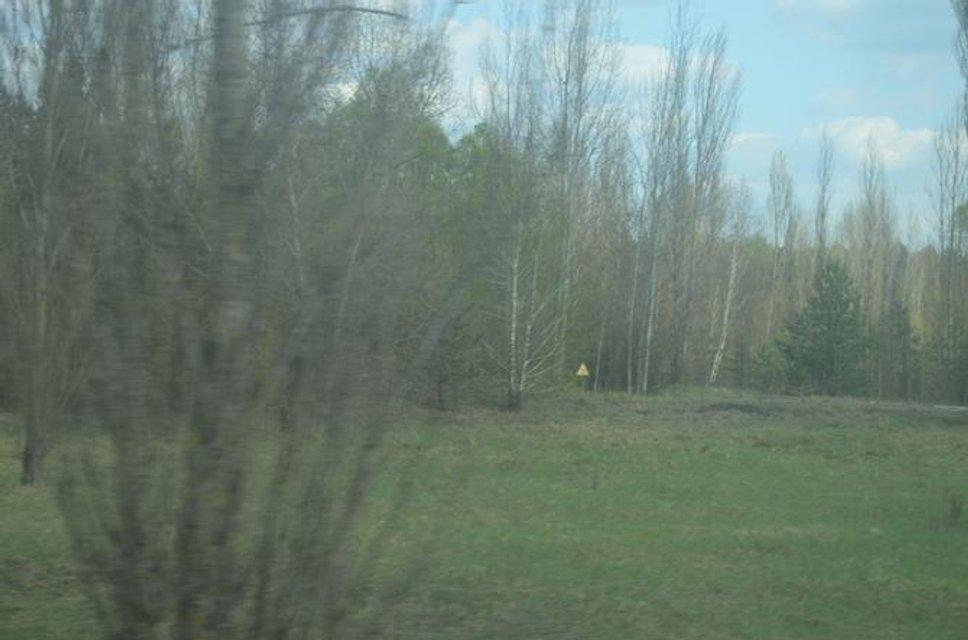 Зона отчуждения - куда не попадают сталкеры: Фоторепортаж из Чернобыля - фото 121154
