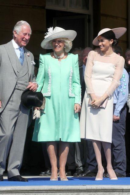 Герцог и герцогиня Сассекские впервые после свадьбы вышли в свет - фото 126558