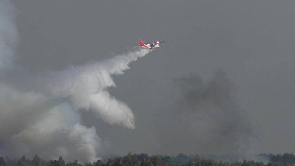 В Черниговской области произошел пожар возле военного полигона - фото 122980