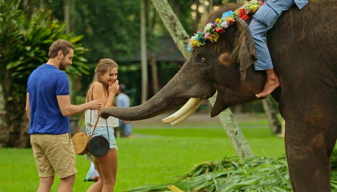 Холостяк 8 сезон 12 выпуск: финал, путешествие на Бали и сюрпризы от Рождена - фото 127365