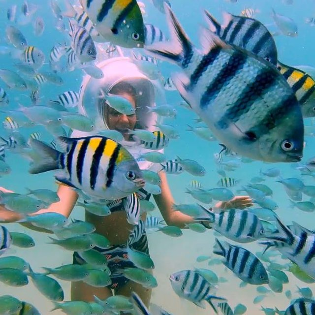 Холостяк 8 сезон 12 выпуск: финал, путешествие на Бали и сюрпризы от Рождена - фото 127355