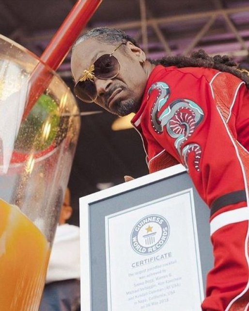 Рэпер Snoop Dogg установил мировой рекорд - фото 128160