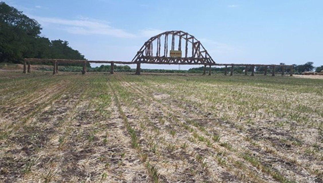 В России Крымский мост продублировали из необычного материала - фото 133131