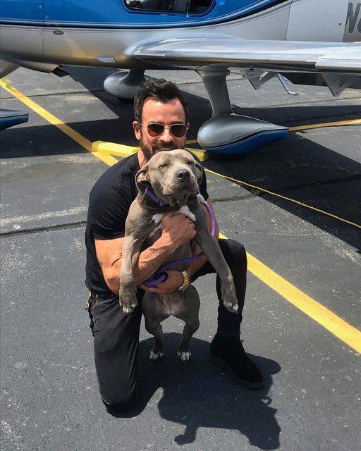 Джастин Теру решил не делить собак с экс-супругой и завел себе питомца - фото 130370