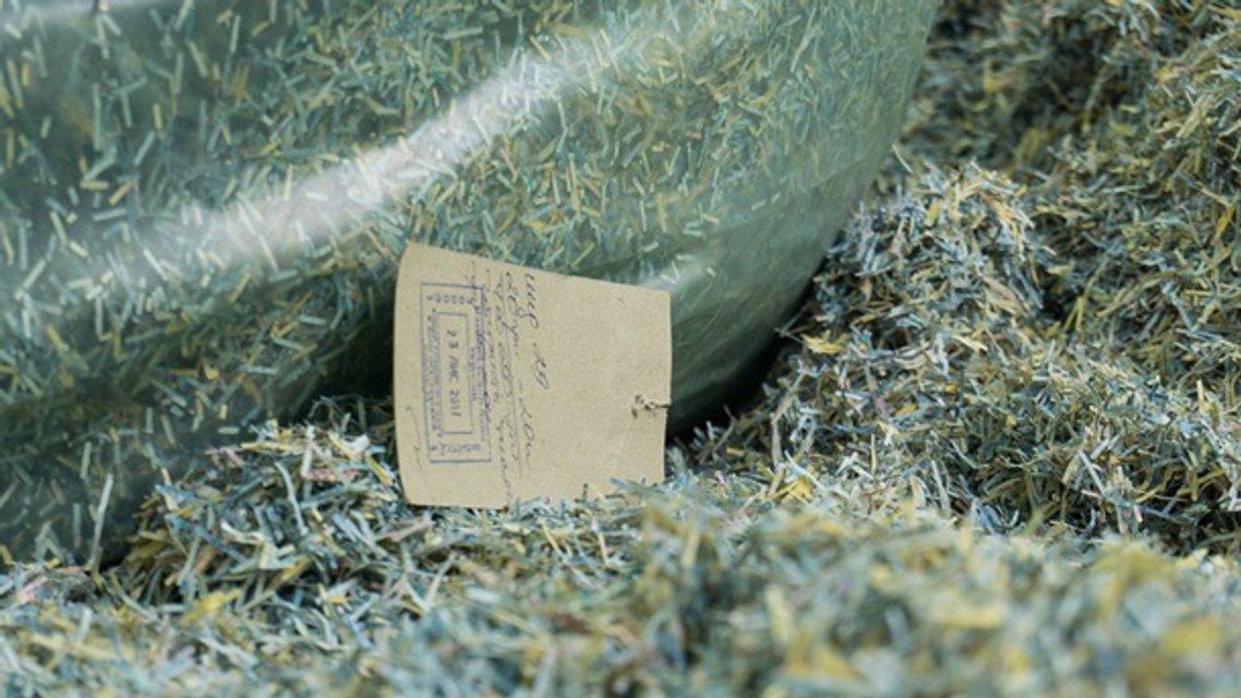В Днепропетровской области нашли мешки с миллионами - фото 134801