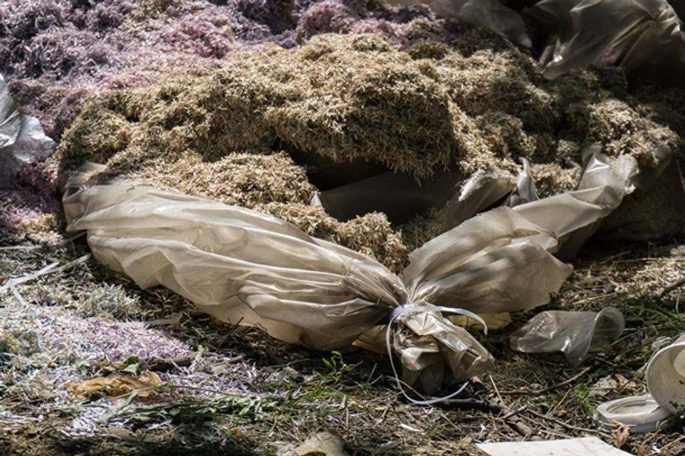 В Днепропетровской области нашли мешки с миллионами - фото 134802