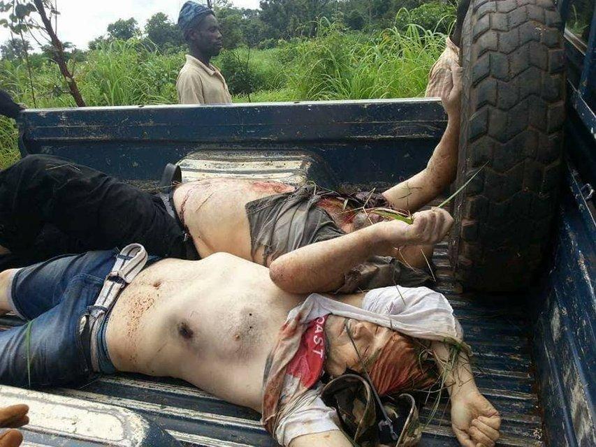 В сети появилось фото и информация об убийстве россиян в ЦАР - фото 139001
