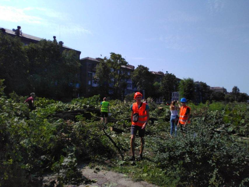 Дефіцити Кальцева: Навіщо у Запоріжжі спиляли півтисячі дерев у центрі міста - фото 140669
