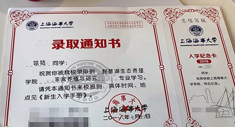 В Китае гусь получил допуск к учебе в университете - фото 141305