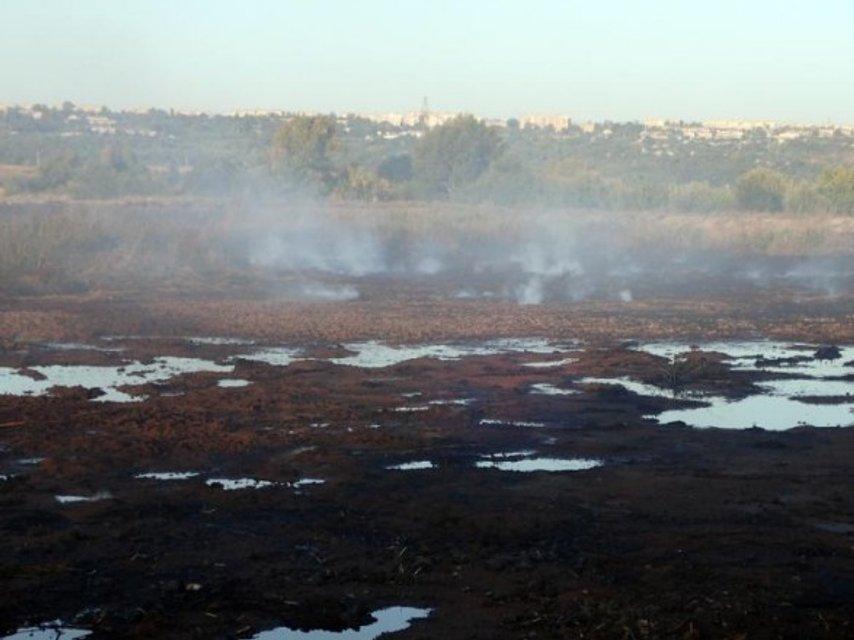 В Луганской области продолжается масштабный пожар на химическом заводе - фото 143554