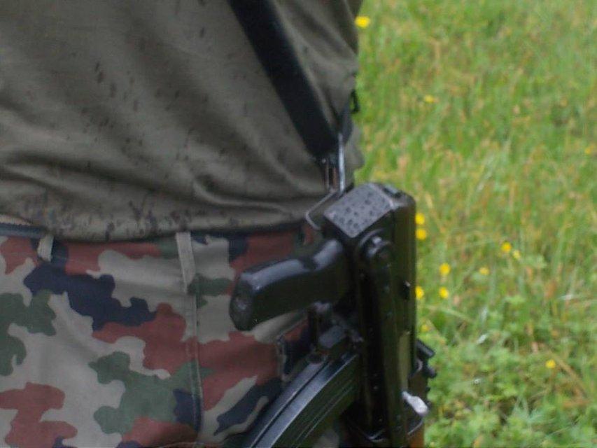 Братство штыря: Реальна ли угроза сепаратизма в Словении - фото 145486