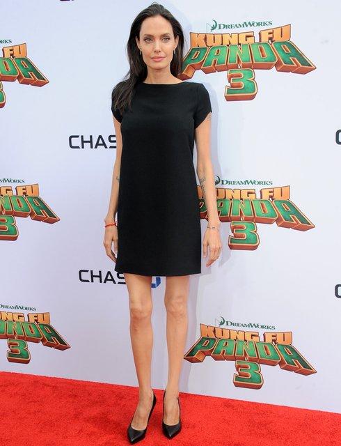 Из-за своей худобы Анджелина Джоли может остаться без карьеры - фото 146441