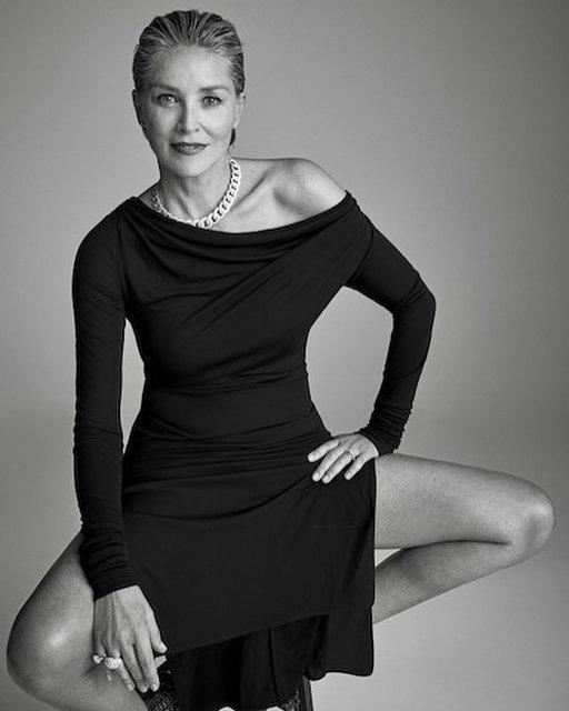 Сексуальная Шэрон Стоун воплотила в новой съемке образ героини 'Основного инстинкта' - фото 147613