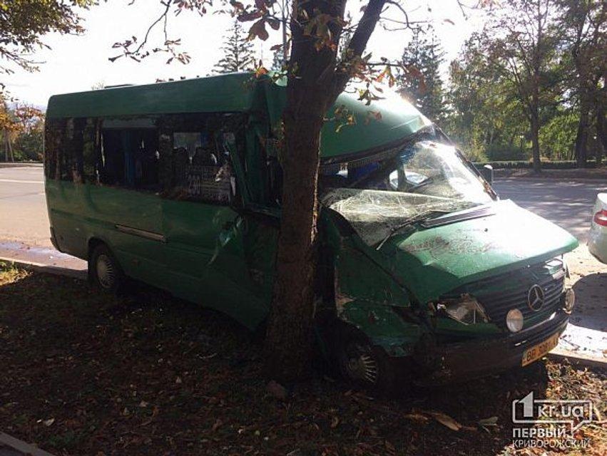 В Кривом Роге забитая людьми маршрутка врезалась в дерево, много пострадавших - фото 149653