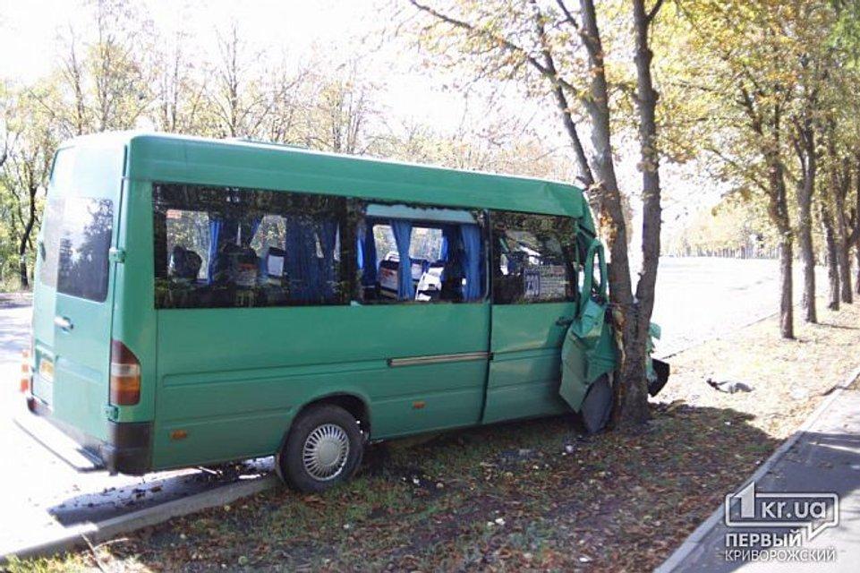 В Кривом Роге забитая людьми маршрутка врезалась в дерево, много пострадавших - фото 149655