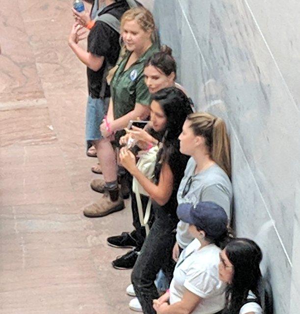Эмили Ратажковски арестовали во время политического протеста - фото 151708
