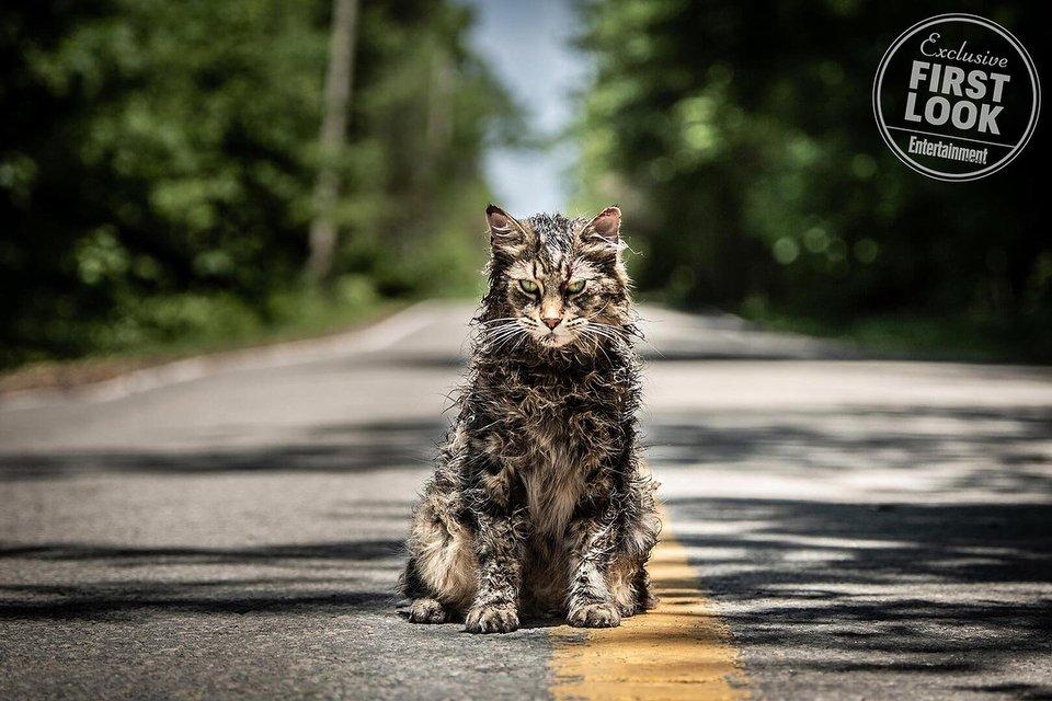 Первые фото фильма Кладбище домашних животных попали в сеть - фото 151853