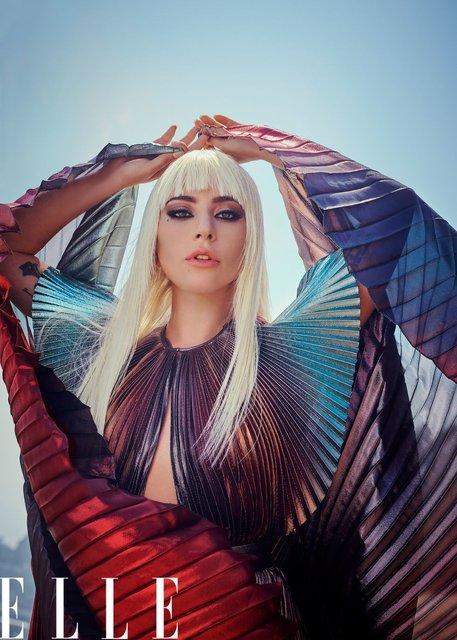 Леди Гага позировала топлес для модного глянца - фото 152765