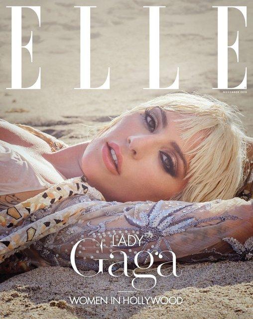 Леди Гага позировала топлес для модного глянца - фото 152767