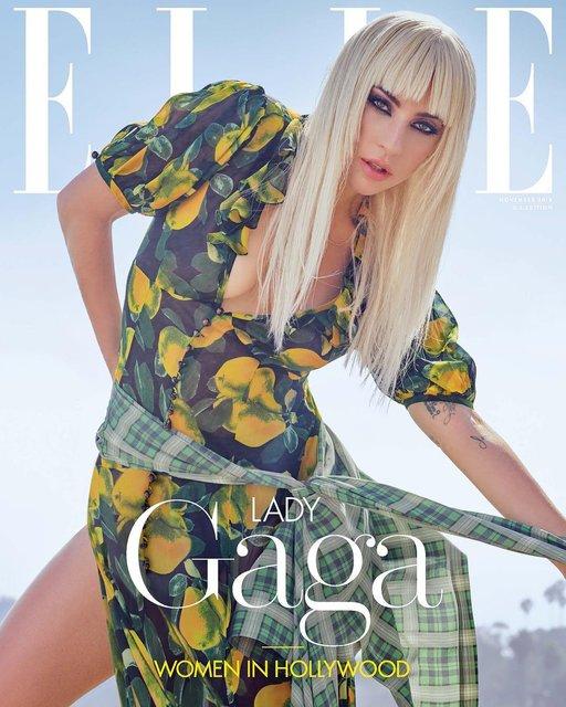 Леди Гага позировала топлес для модного глянца - фото 152768