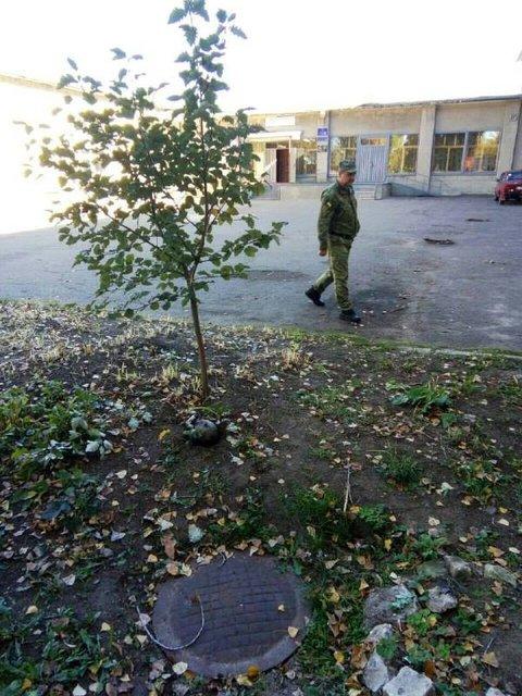 На клумбе во дворе школы были обнаружены части снарядов - фото 153030