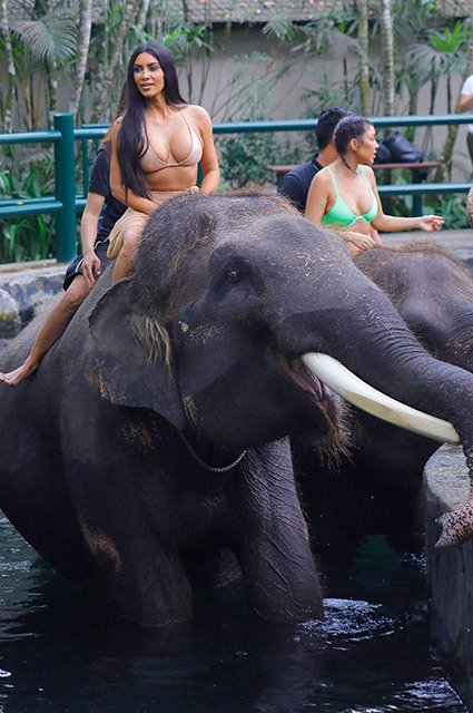 Ким Кардашьян в купальнике прокатилась на слоне - фото 157225