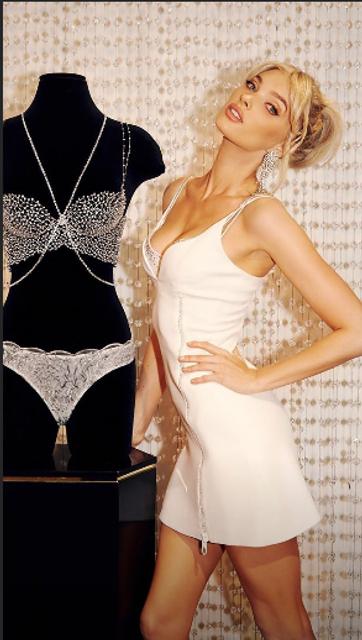 Victoria's Secret Fashion Show 2018: Fantasy Bra за миллион долларов наденет Эльза Хоск - фото 157526