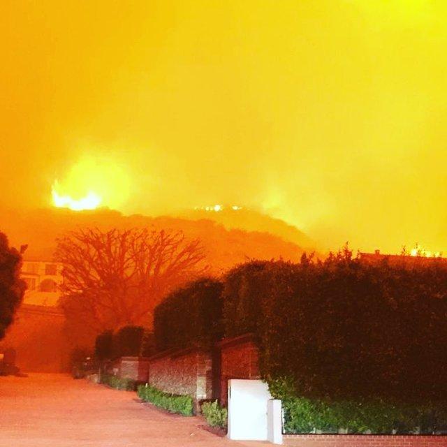 Голливуд в огне: звезды показали свои сгоревшие дома - фото 158636