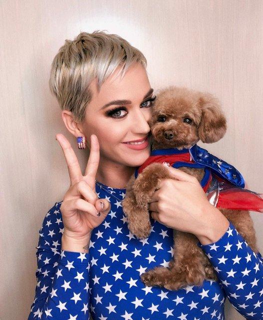Назвали топ-10 самых дорогих певиц от Forbes в 2018 году - фото 160126
